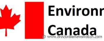 Heat wave in Leeds-Grenville to last through next week - brockvillenewswatch.com