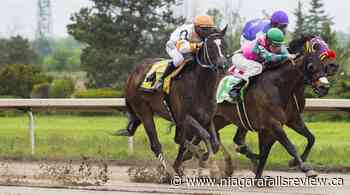 Fort Erie Race Track wraps up June with Monday, Tuesday race programs - NiagaraFallsReview.ca