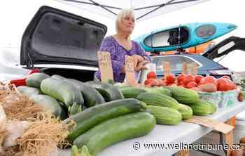 Wainfleet's Farmers' Market reopens Wednesday | wellandtribune.ca - WellandTribune.ca