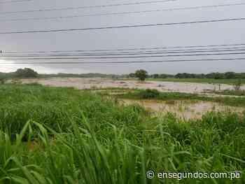 Se desborda el río Pocrí próximo a la vía panamericana en Coclé - En Segundos