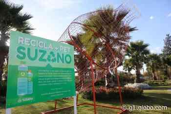 Viveiro Municipal de Suzano recebe área para descarte de garrafas de plástico - G1