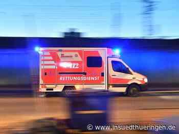 Mann in Meiningen durch Hundebisse schwer verletzt - inSüdthüringen