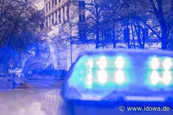 PI Regenstauf: Mit Moped gegen Lichtmast - idowa