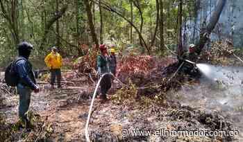 Cazadores ilegales serían responsables de los incendios en la Ciénaga Grande - El Informador - Santa Marta