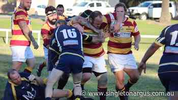 Polkolbin Reds join Singleton Bulls in revamped 2020 Newcastle Hunter Rugby Union competition - The Singleton Argus