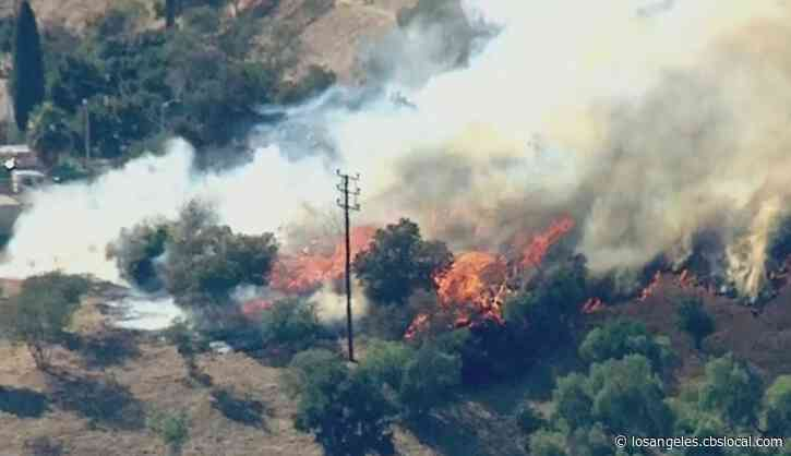 One-Acre Brush Fire Burns In Elysian Park Area