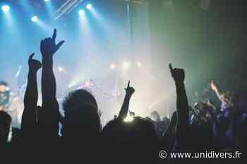 Pique-nique musical : Romano Dandies jeudi 20 août 2020 - Unidivers