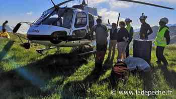 Saint-Girons. Quatre élèves sur un chantier à 2 160 m d'altitude - ladepeche.fr