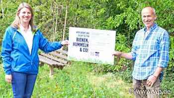 Wilnsdorf: Wilde Wiesen für Bienen, Hummeln & Co - Westfalenpost