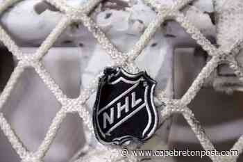 NHL's complicated new CBA not done yet - Cape Breton Post