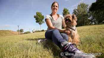 Denain: Mélanie, comportementaliste, pour vous aider à mieux comprendre votre chien - La Voix du Nord