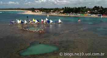 Porto de Galinhas, Maracaípe e demais praias de Ipojuca estão liberadas para banho de mar a partir deste sábado (20) - Blog de Jamildo - NE10