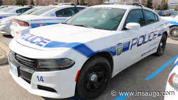 Weapon seen during carjacking in Mississauga - insauga.com