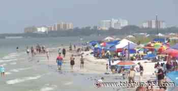 Playas de la costa oeste de Florida se llenan de turistas - Telemundo 51 - Miami