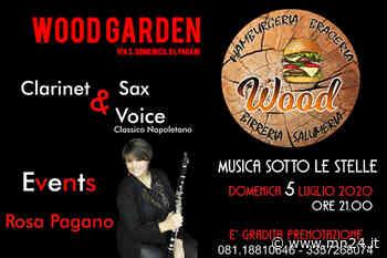 """Pagani - Musica sotto le stelle questa sera al """"WOOD GARDEN""""con Event Clarinet & Sax Voice - Ansa"""