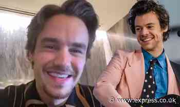 One Direction reunion: Liam Payne leaves fans in turmoil with Harry Styles FaceTime clue - Express