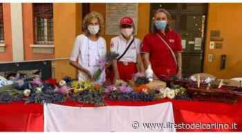 Croce Rossa di Cesena, raccolti 26mila euro in un mese - il Resto del Carlino