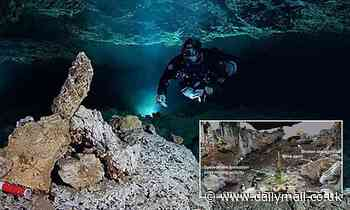Scientists find evidence of America's first mines with skeletons from 12,000 years ago underwater