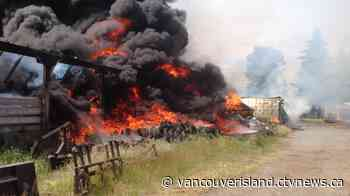 Several barns destroyed in massive blaze near Courtenay - CTV News VI