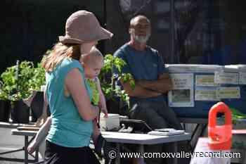 Wednesday street market returns to downtown Courtenay - comoxvalleyrecord.com