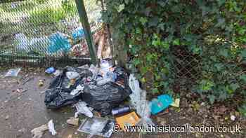 Litter picking groups to clear Stanmore streets