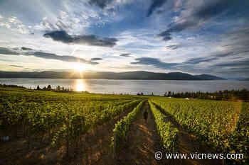 From Valleys to Vineyards: British Columbia's Bountiful Playground - Victoria News