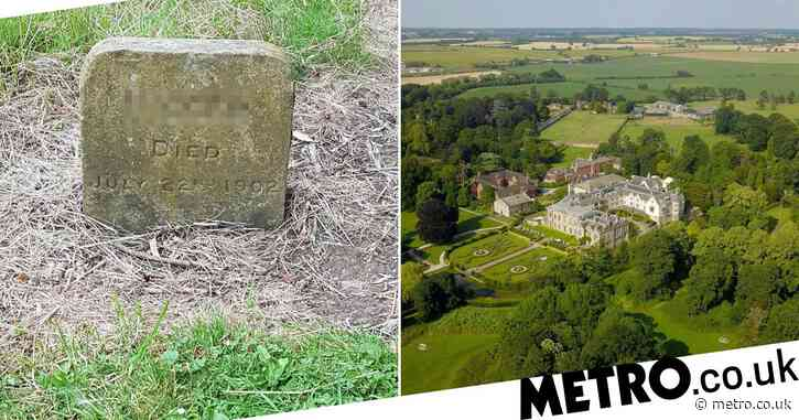 Memorial for dog called 'N word' which died in 1902 is removed from cemetery