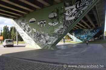 Nieuwe fietsroute leidt langs kunst op plaatsen waar je dit niet verwacht - Het Nieuwsblad