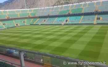 Stadio, si pensa a Caltanissetta - ForzaPalermo.it