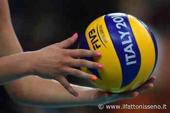 Volley femminile, l'Albaverde di Caltanissetta disputerà il campionato di B2 - il Fatto Nisseno