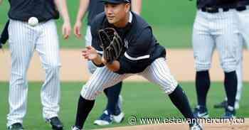 Yanks' Tanaka hit in head; LeMahieu, Cessa test positive - Estevan Mercury