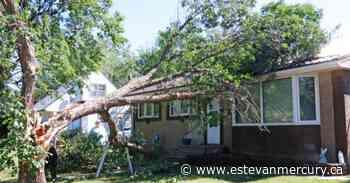 Wild thunderstorm causes damages in Weyburn area - Estevan Mercury