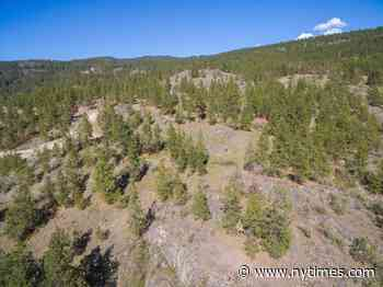 Lot 6 - 4750 North Naramata Road, Naramata, BC - Home for sale - The New York Times