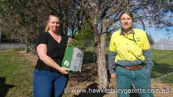 Hawkesbury City Council gives free native plants to residents with bushfire-affected properties - Hawkesbury Gazette