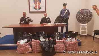 Savona, sequestrati 27 chili di marijuana dai carabinieri - Il Secolo XIX