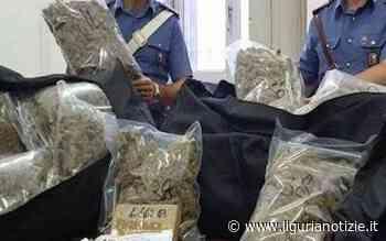 Da Novi a Savona per rifornire i pusher: albanese arrestato. Sequestrati 27 chili di droga - Liguria Notizie