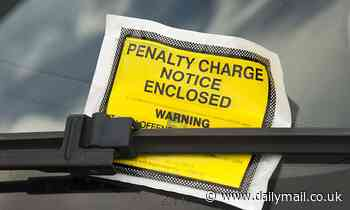 A parking fine is given out every four seconds as tickets dished out rockets to 8.4million in a year