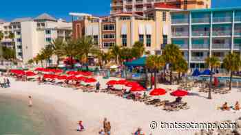 Clearwater Beach's first eco-friendly hotel officially opens, Winter the Dolphin's Beach Club - thatssotampa.com