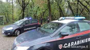 Spaccia nei boschi di Oleggio, arrestato dai carabinieri - La Stampa