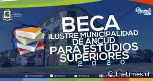 Municipio inicia proceso de información de Beca Ilustre Municipalidad de Ancud para Estudios Superiores 2020 - THE TIMES CHILE