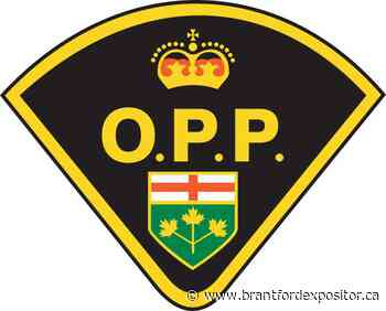 Driver swerves to avoid chipmunk - Brantford Expositor