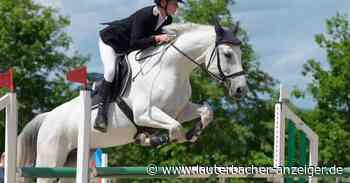 Pferdesport: Auch Amateure dürfen wieder ran - Lauterbacher Anzeiger