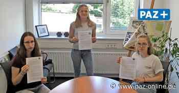 Peine: Fridays for Future kritisiert das Klimaschutzkonzept der Stadt - Peiner Allgemeine Zeitung - PAZ-online.de