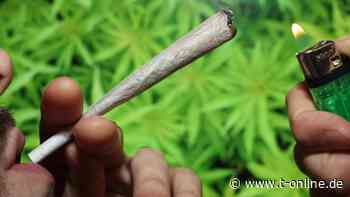 Cannabis-Sucht: App soll jungen Kiffern den Suchtaussteig erleichtern