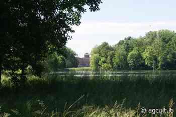 Musei, Mibact: domani riaprono il Castello di Racconigi e il Complesso di Orsanmichele - AgCult