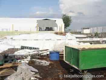 Clausuran productora de Hortalizas en Etzatlan, Jalisco. - Tala Jalisco Noticias