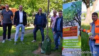 Baum-Paten machen Iserlohn und Hemer lebenswerter - IKZ News