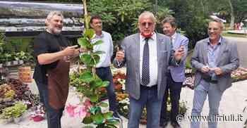 Taglio del nastro per Gorizia in fiore - Il Friuli