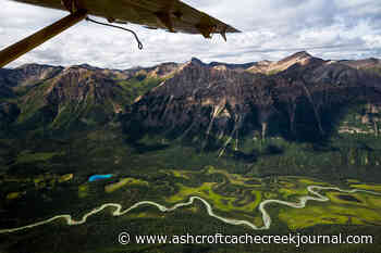 Experience BC's Northern Wild, Nature on a Whole New Scale - Ashcroft Cache Creek Journal