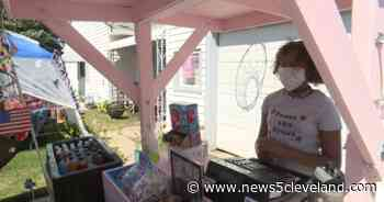 9-year-old entrepreneur turns small lemonade stand into thriving concession stand in Elyria - News 5 Cleveland